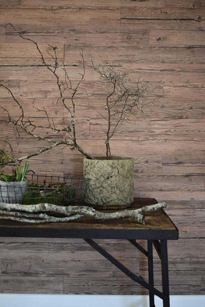 bildergalerie. Black Bedroom Furniture Sets. Home Design Ideas